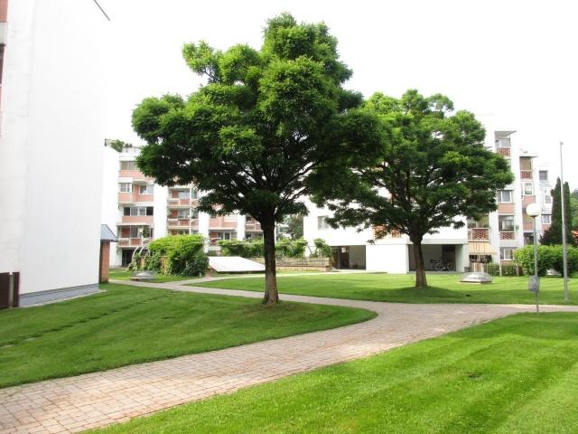 3 Zi-Gartenwohnung in der Paracelsusgasse mit TG