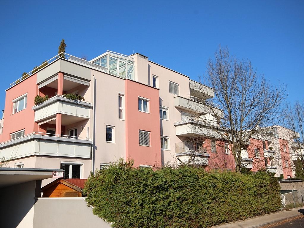Junge 2 Zi Wohnung mit XL-Terrasse - Waidmannsdorf