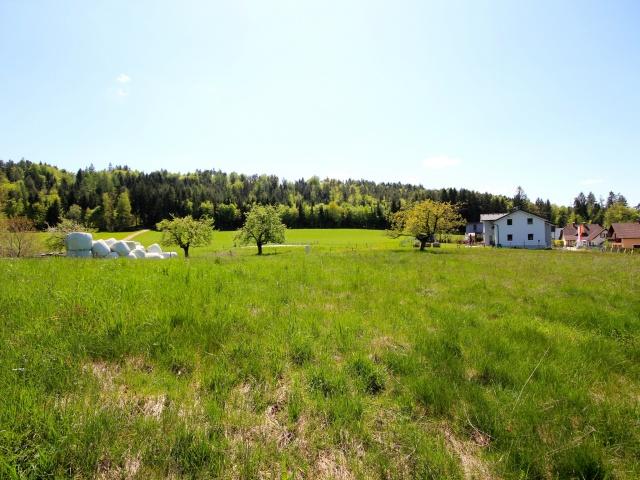 Baugrundstück mit Panoramablick in Schiefling