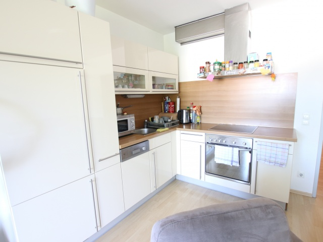 Neuwertige 3 Zi Wohnung mit Balkon - Waidmannsdorf